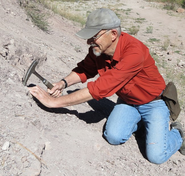 Dr. David Elliott in the field collecting fossils