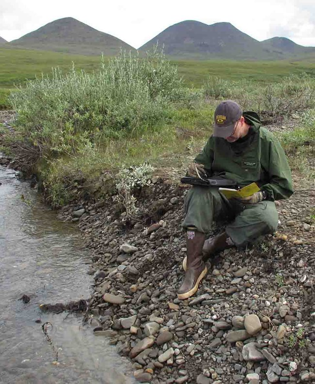 Jason sits at the edge of a small stream on the Alaska tundra recording data.