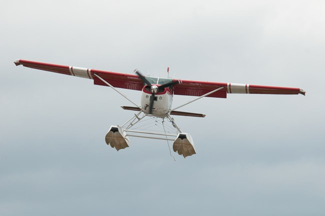 A front view of a red and white Cessna 185 aircraft on floats