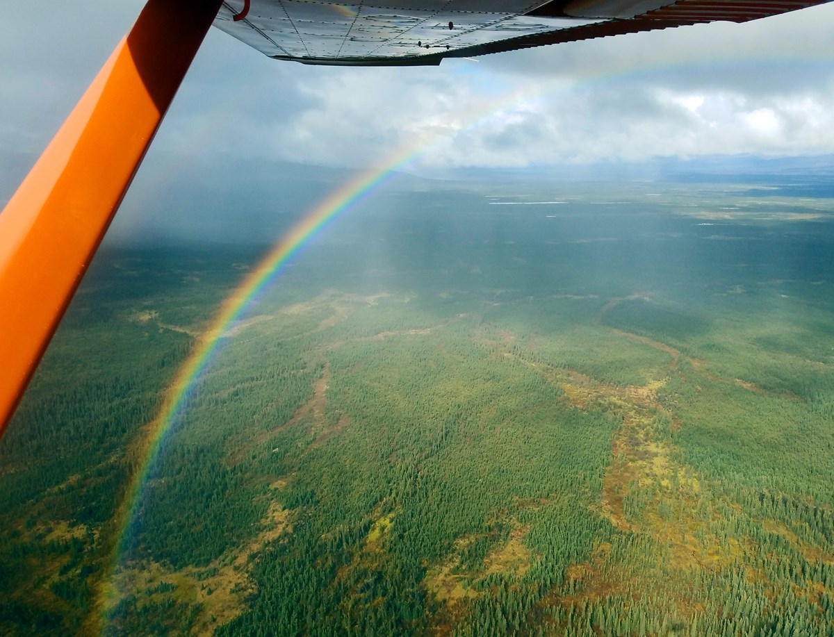 An aerial image of a rainbow arching across a forested area