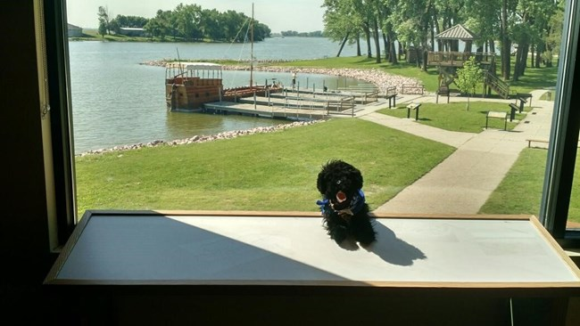 toy dog with keelboat and lake in the background