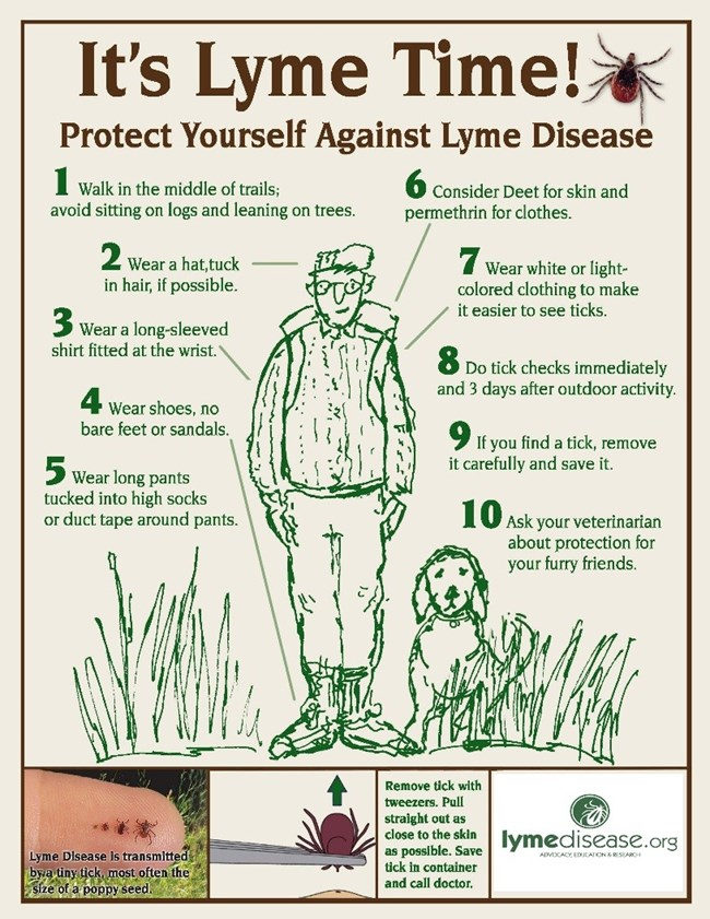 Graphic showing 10 ways to protect yourself from Lyme Disease.