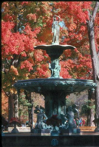 Stone fountain among bright red trees.