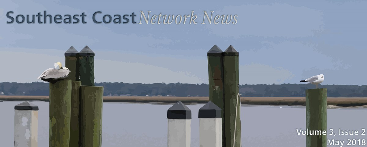 Southeast Coast Network banner image of a gull and a pelican on a dock at Cumberland Island National Seashore
