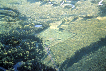 Aerial view of grass and trees.