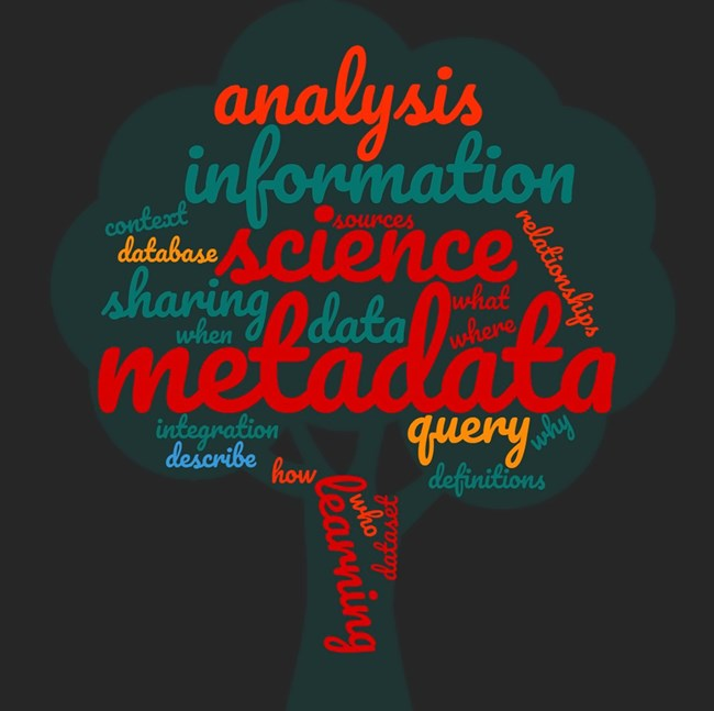 Metadata word cloud in the shape of a tree