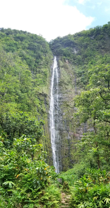 A waterfall flows over a cliff lush with verdant vegetation.