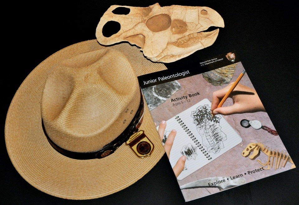 Ranger hat, Junior Paleontologist badge and booklet, and a replica of a fossil skull