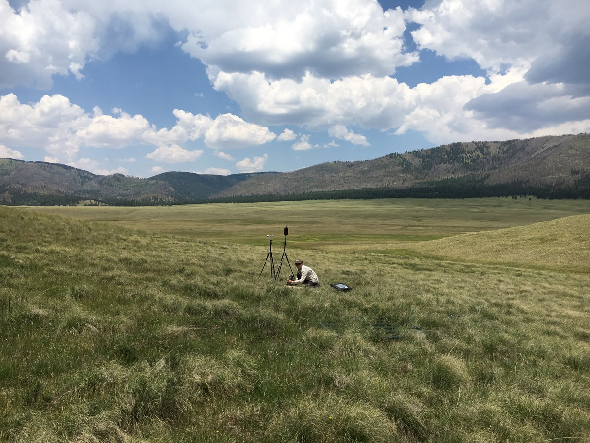 A National Park Service acoustic specialist installs sound recording equipment in the expansive, lush green grasslands of Valles Caldera National Preserve.