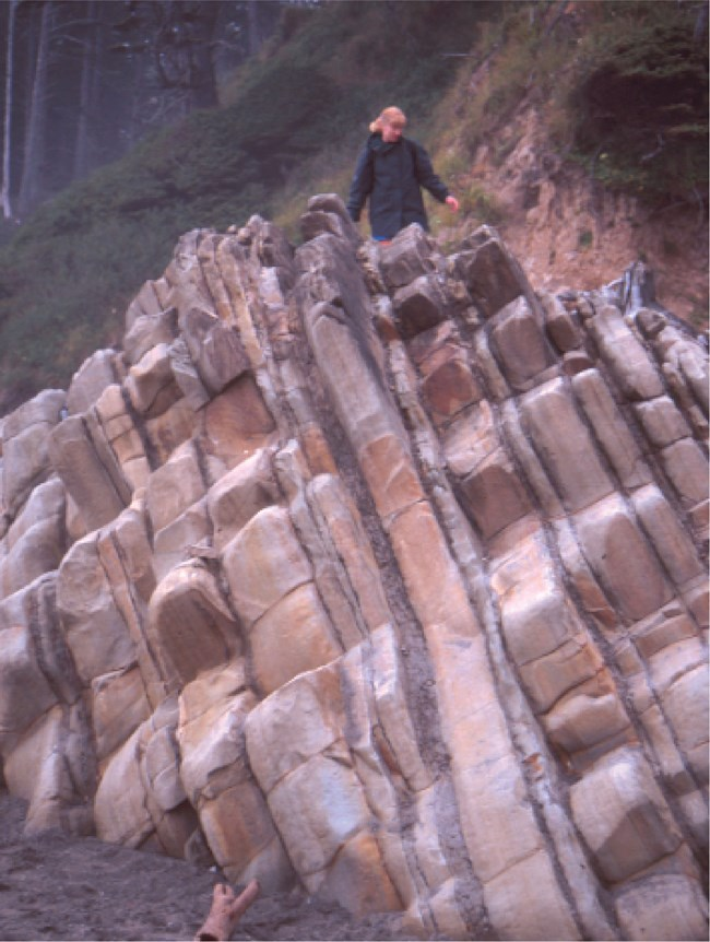 person standing beside tilted sandstone outcrop
