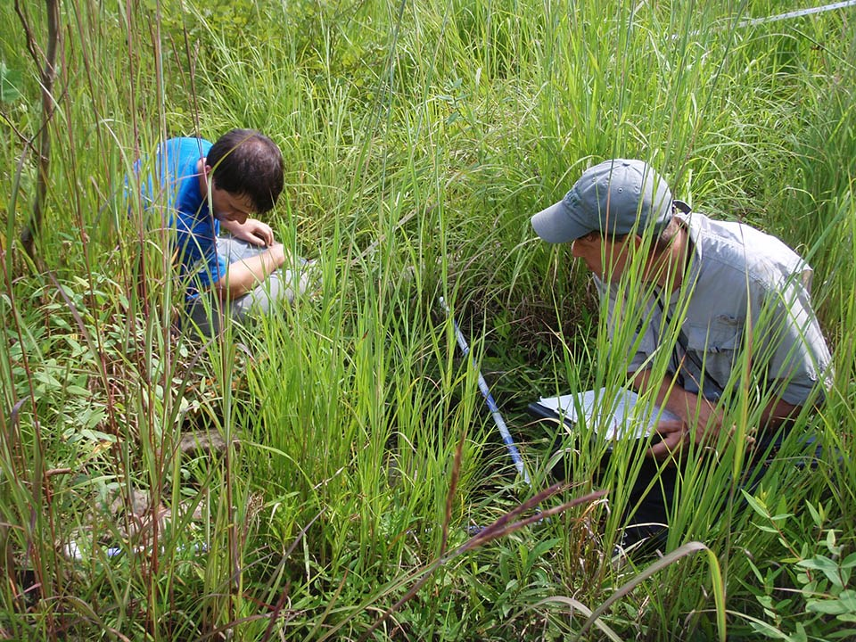 Two people sitting on the ground, examining a vegetation monitoring plot and recording data