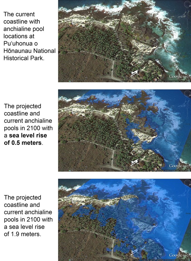 Three sea level rise scenarios at Pu'uhonua o Hōnaunau National Park