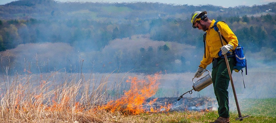 Wildland firefighter uses a drip torch to ignite grasses in an open field.