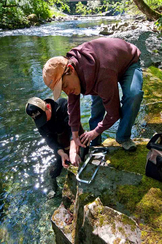 A researcher installs a sonde to collect water quality data.