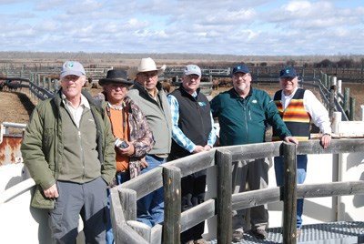 Six men stand above a bison loading doc and smile at the camera