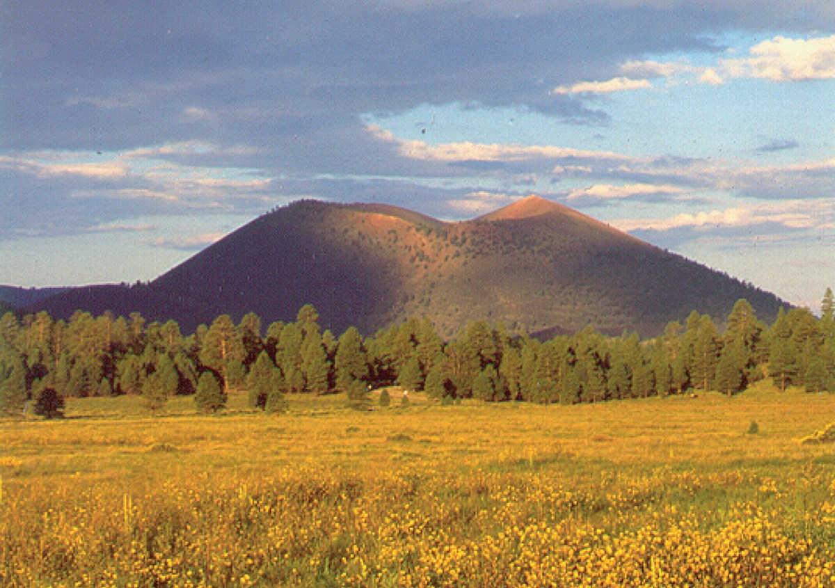 forest and rangeland with cinder cone