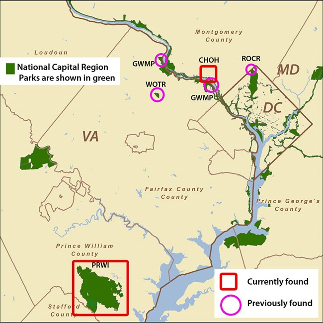 Map of DC area parks with freshwater sponges