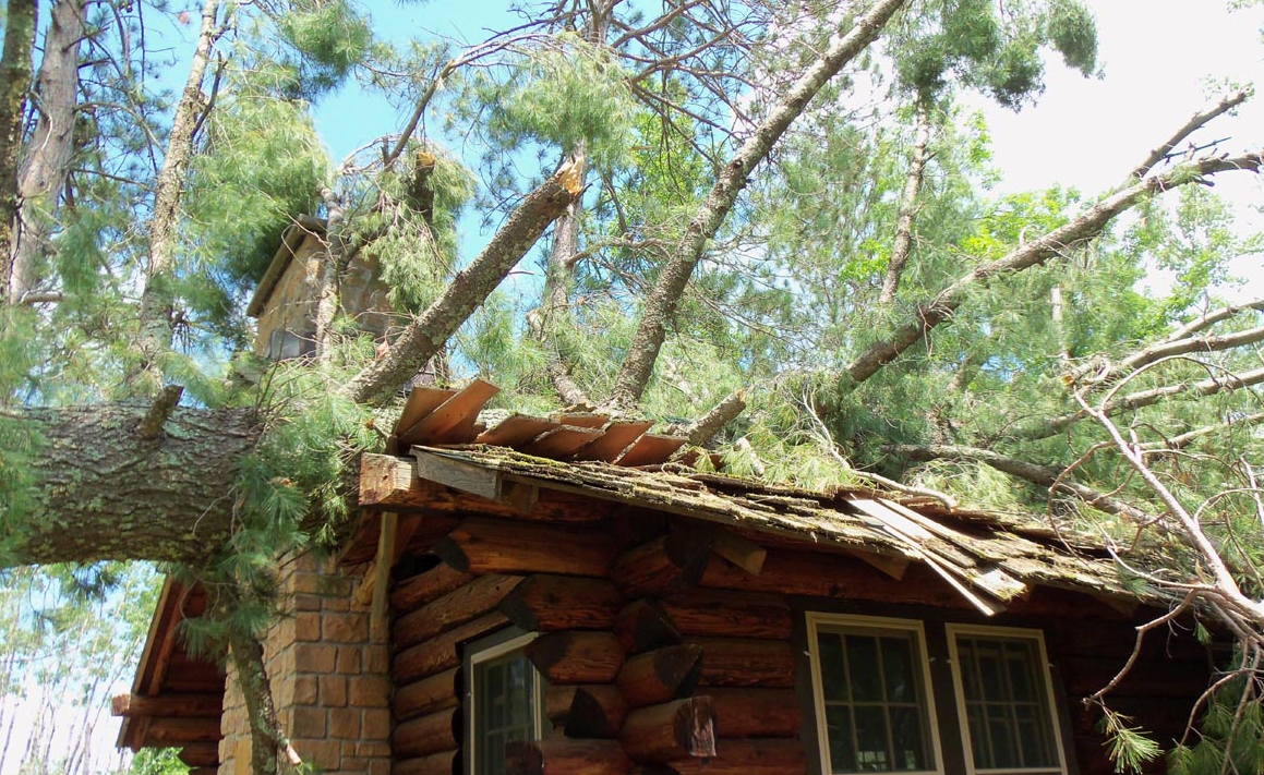 Log cabin with a fallen tree on the roof.
