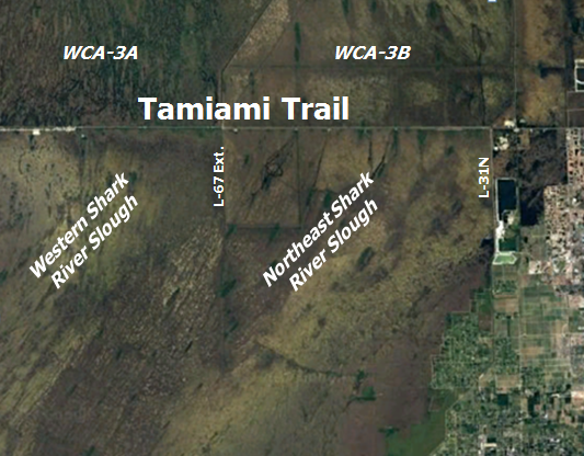 Map showing the East/West portion of the Tamiami Trail and how it is an impediment to natural sheetflow.