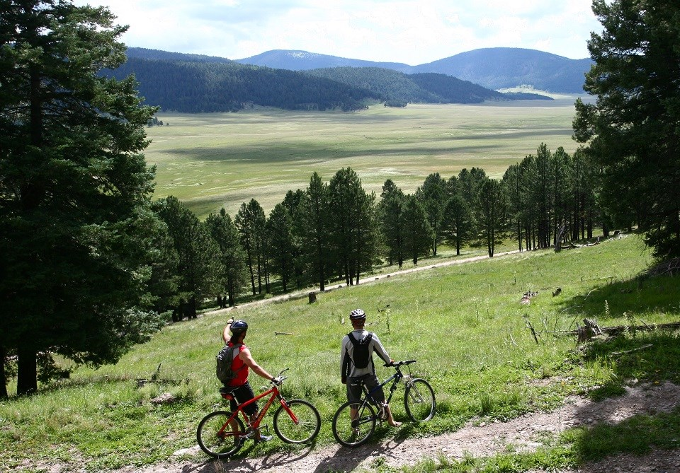 Mountain bikers enjoying the view of a valley
