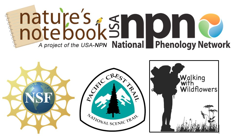 Nature's Notebook, National Phenology Network, NSF, Pacific Crest Trail, and Walking With Wildflowers logos