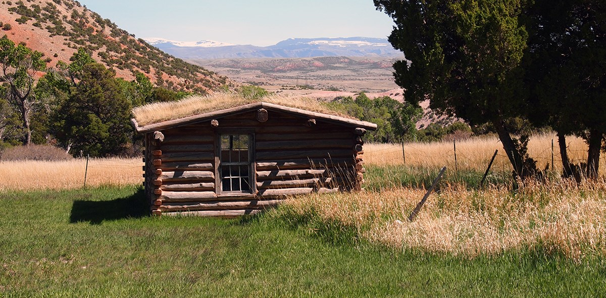 A log cabin schoolhouse sits in a grassy field with a couple of trees nearby and a small hill behind and mountains in the distance.