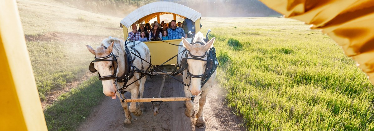 View out of a wagon looking at people riding in another horse drawn covered wagon