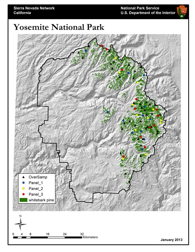 Map of Yosemite National Park with whitebark pine sampling