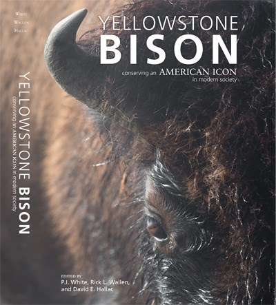 Cover of book showing an extreme close up of a bison's face
