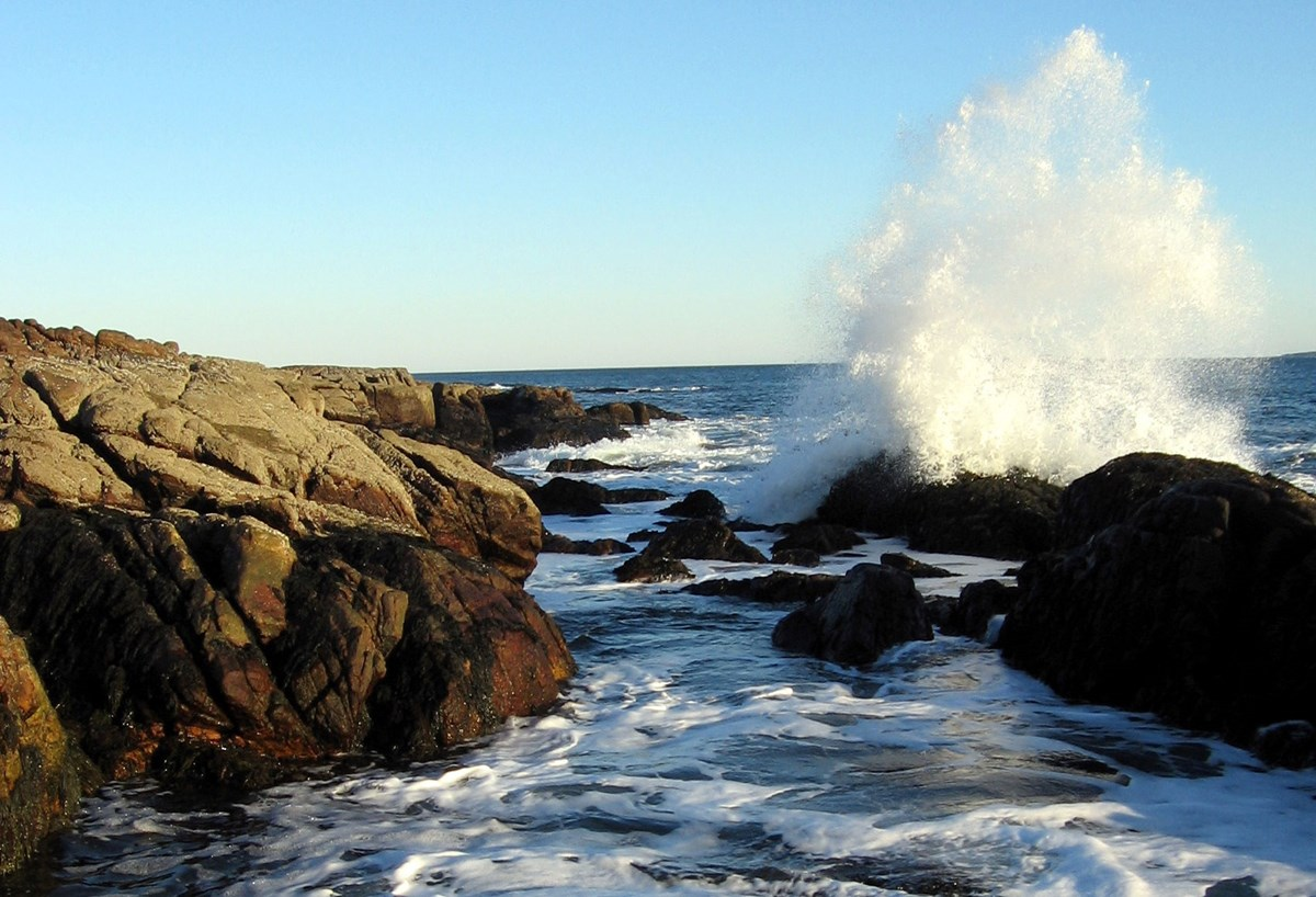 A wave crashes into the rocks at Ship Harbor.