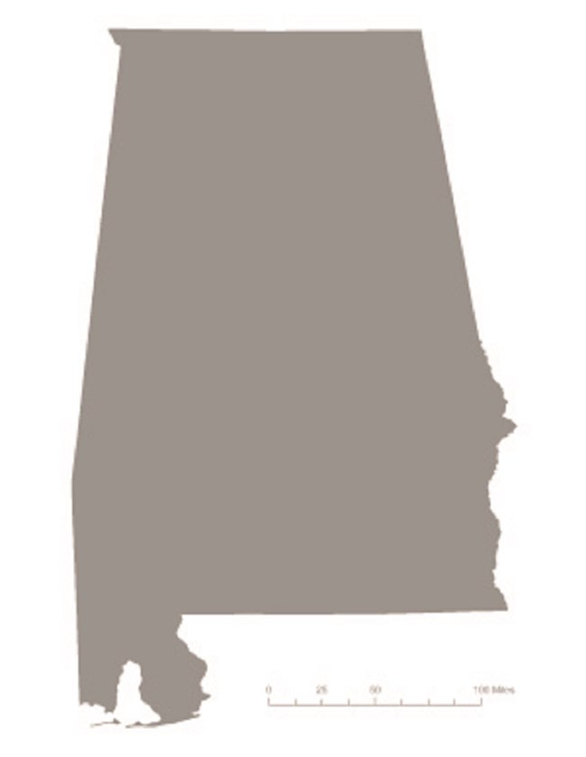 Picture of state of Alabama in gray – indicating it was not one of the original 36 states to ratify the 19th Amendment. Courtesy Megan Springate.