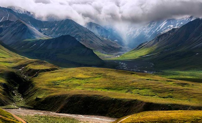 A view of the alpine tundra high country in Denali.