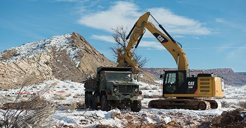 a large excavator lifts a tamarisk into a dump truck