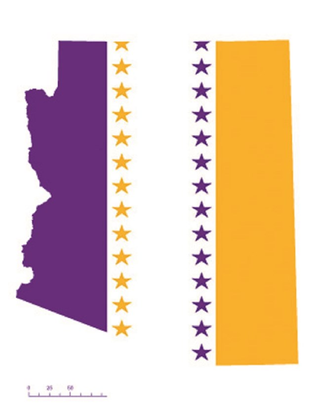 State of Arizona depicted in purple, white, and gold (colors of the National Woman's Party suffrage flag) – indicating Arizona was one of the original 36 states to ratify the 19th Amendment.