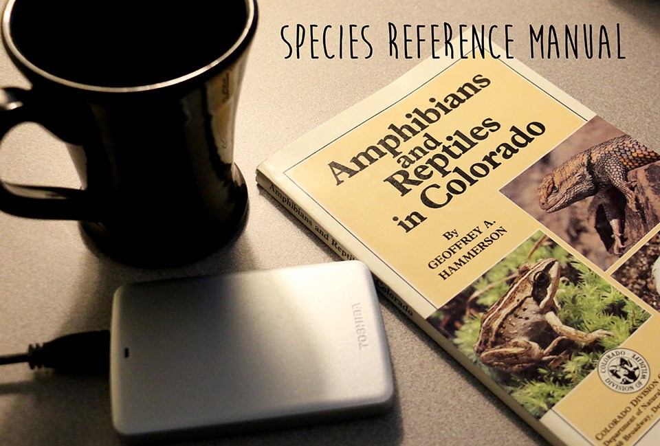 a species reference book, a black coffee mug, and a small harddrive on a desk
