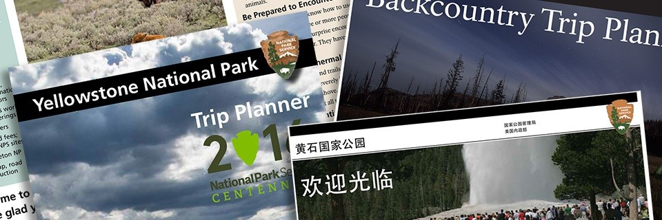 Image of different park brochures