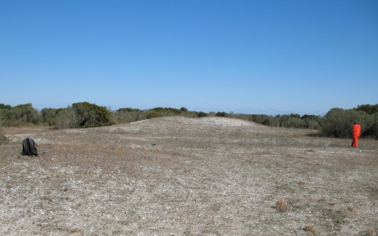 CALO-40, facing E, towards mound Shell mound/midden at Cape Lookout National Seashore