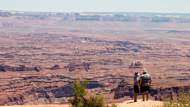 Park visitors looking out at Canyonlands