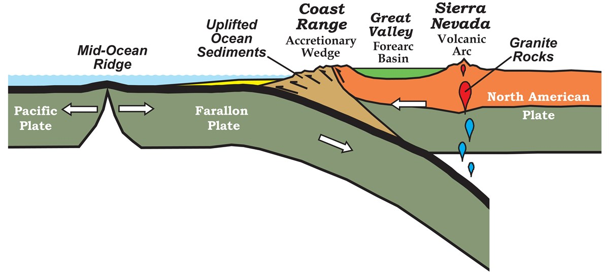 diagram of oceanic crust being subducted under continental crust