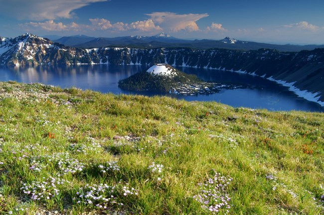 Scenic view of Crater Lake with wildflowers