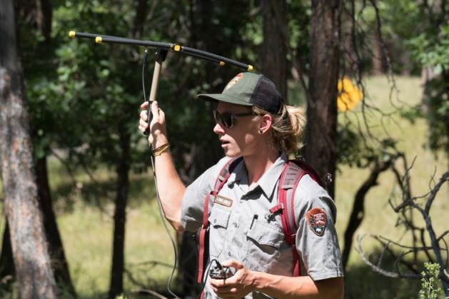 A ranger uses telemetry equipment to track bats, which looks like a satellite