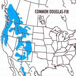 Map highlighting Douglas fir's range in the United States and adjoining countries.