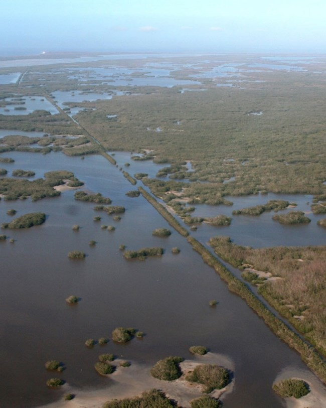 aerial view of everglades and canal