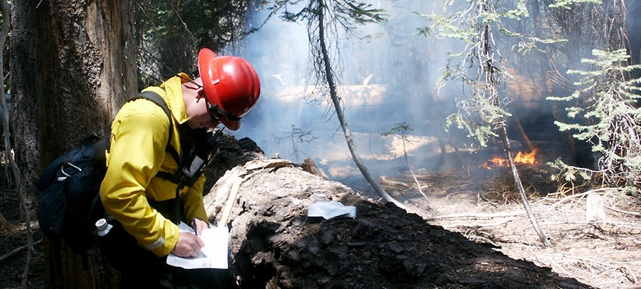 A firefighter writes on an piece of paper near a large log, while a fire burns with small flames nearby.