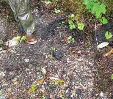 Leg and foot in rain gear in an open area with leaf litter on the muddy ground.