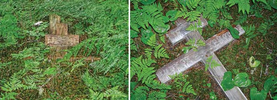 Composite image of two photos of wooden crosses laying on the ground surrounded by plants.