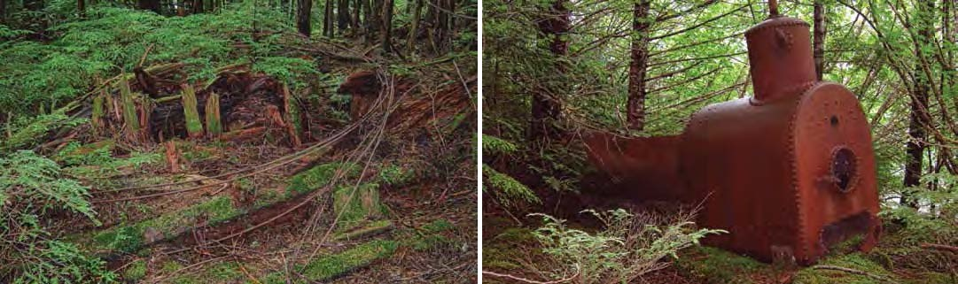 Composite of two photos. Left: Wood and rusted metal covered in moss. Right: large rusted metal tank