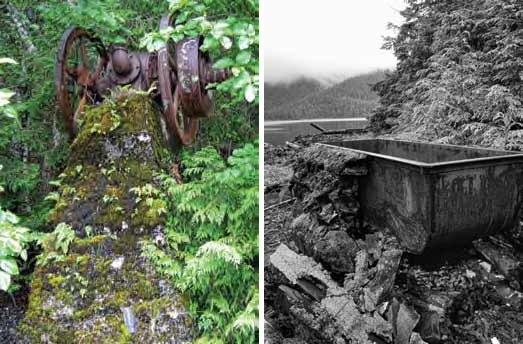 Composite of two images. Left: rusted metal with wheels in ferns. Right: Black and white vat in intertidal area.