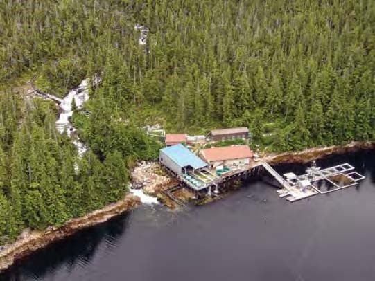 Aerial view of buildings and pier on the shore with forest behind them.