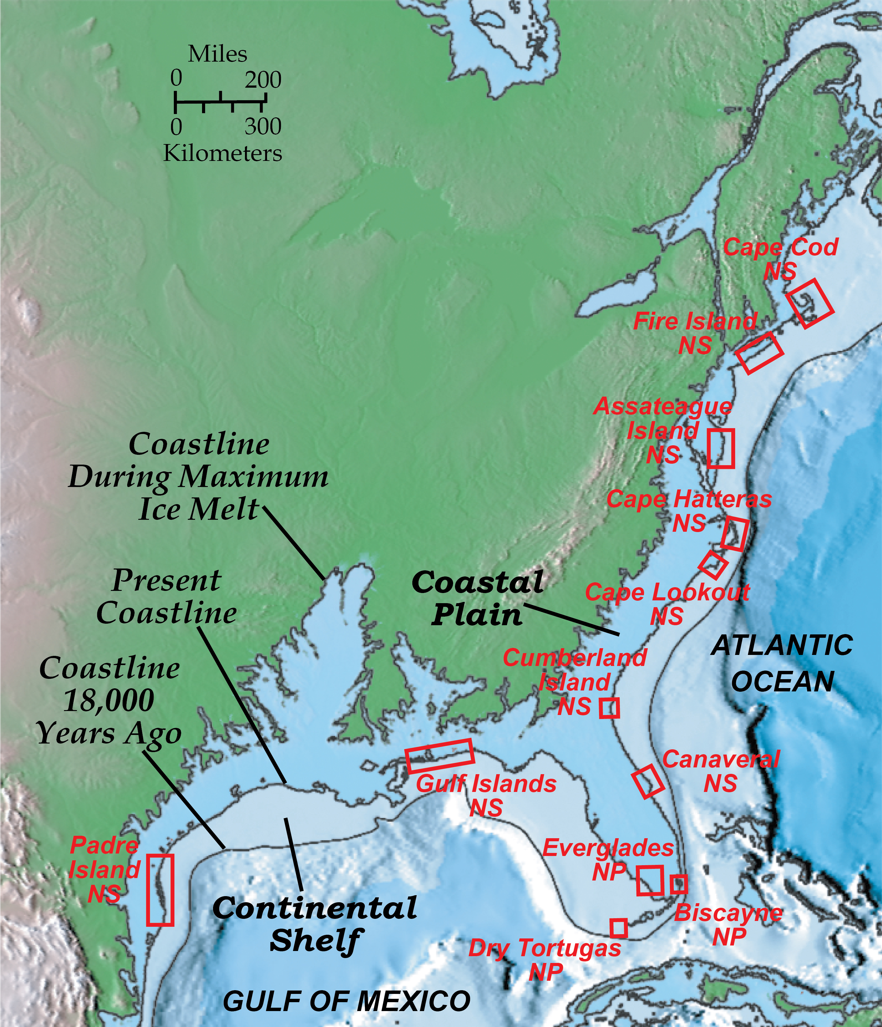 Which Of The Following Is True Regarding The Map Outline Of The Shorelines Of Florida? Divergent Plate Boundary—Passive Continental Margins   Geology